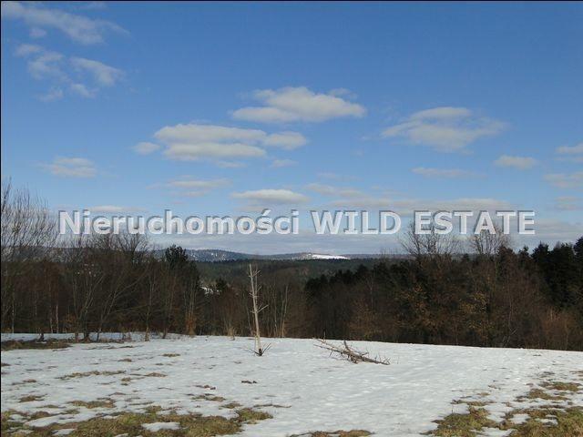 Działka rolna na sprzedaż Lesko, Lesko  4225m2 Foto 3