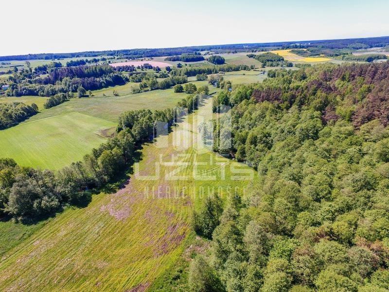 Działka rolna na sprzedaż Czarnocin  5900m2 Foto 4