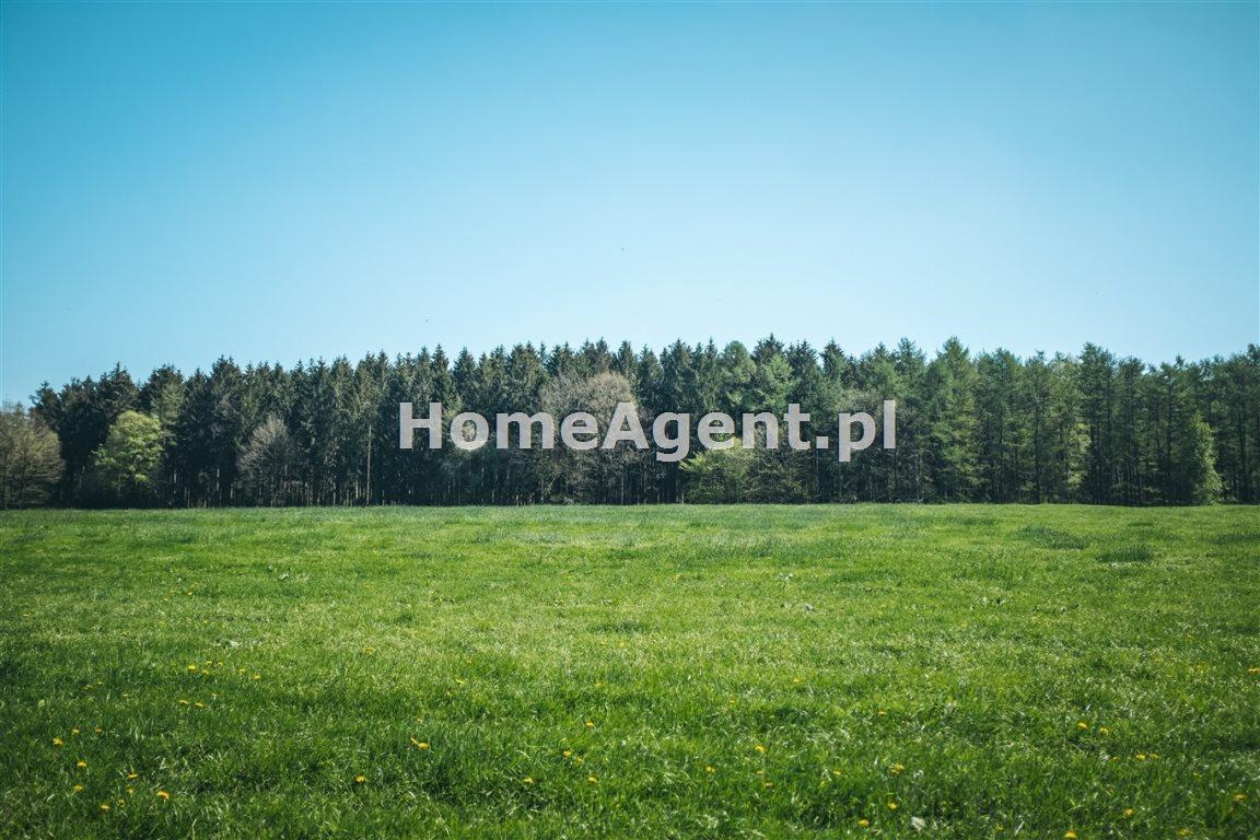 Działka inwestycyjna na sprzedaż Gliwice, Centrum, Tarnogórska  5478m2 Foto 4