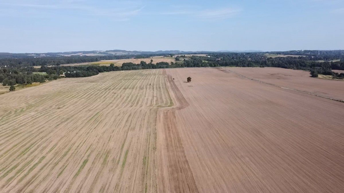 Działka rolna na sprzedaż Gryfów Śląski, Rzeczna  22430m2 Foto 6