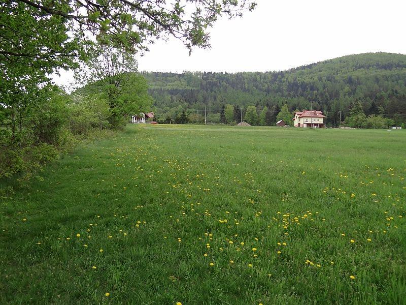 Działka inna na sprzedaż Ustroń, Leśna  2726m2 Foto 4