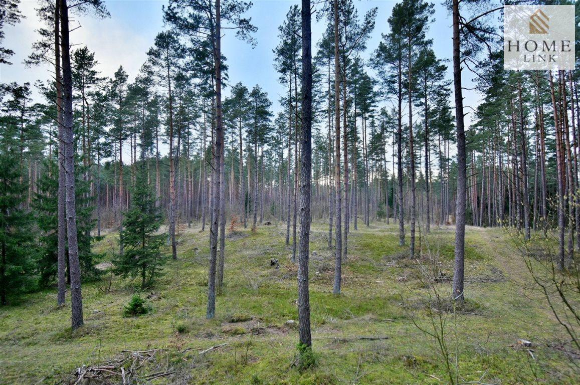 Działka leśna na sprzedaż Warkały  47800m2 Foto 1