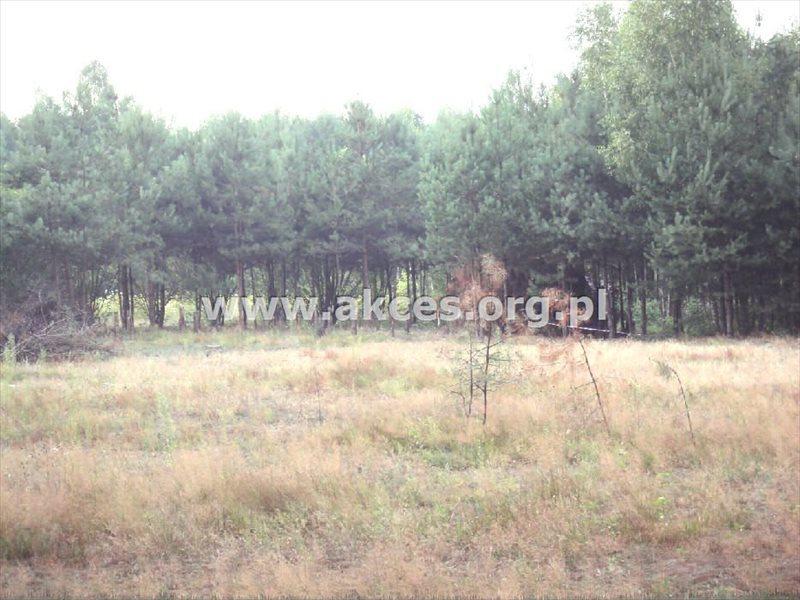 Działka budowlana na sprzedaż Korzeniówka  12850m2 Foto 1
