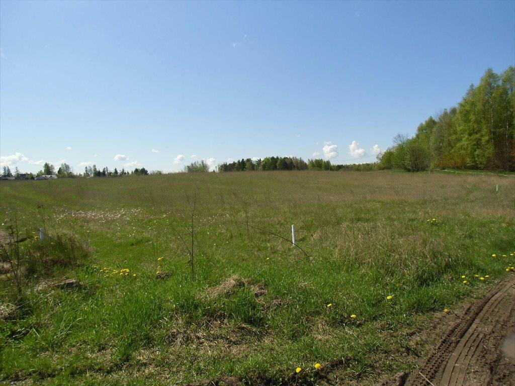 Działka rolna na sprzedaż Bojano, Wołoszyna  180000m2 Foto 2