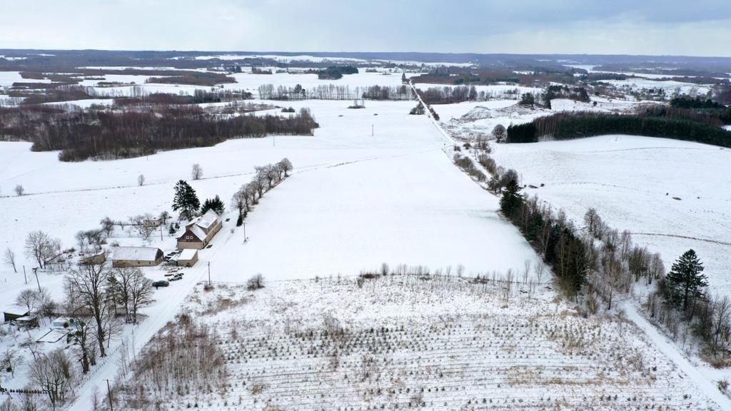 Działka rolna na sprzedaż Wyszowate, Wyszowate  3000m2 Foto 6