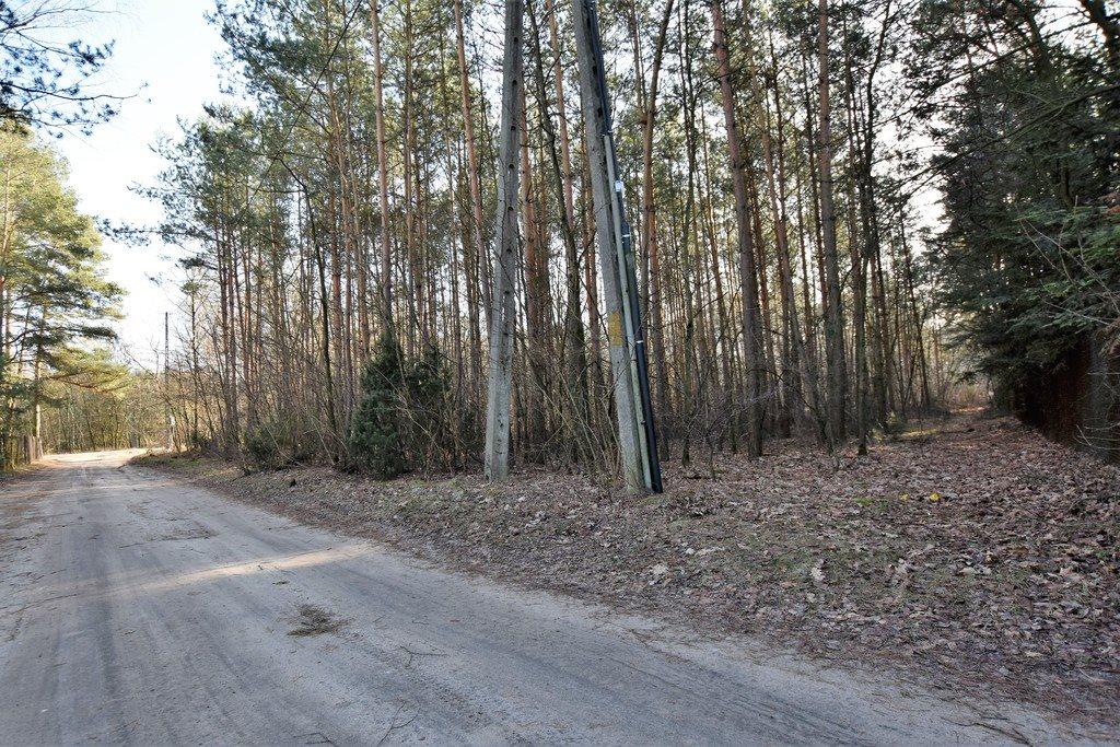Działka leśna z prawem budowy na sprzedaż Nowy Świat  2770m2 Foto 2