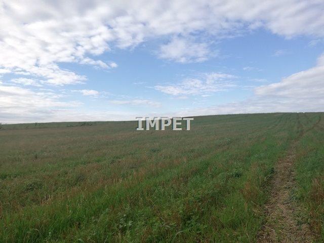 Działka rolna na sprzedaż Dłużyna Dolna  17069m2 Foto 1