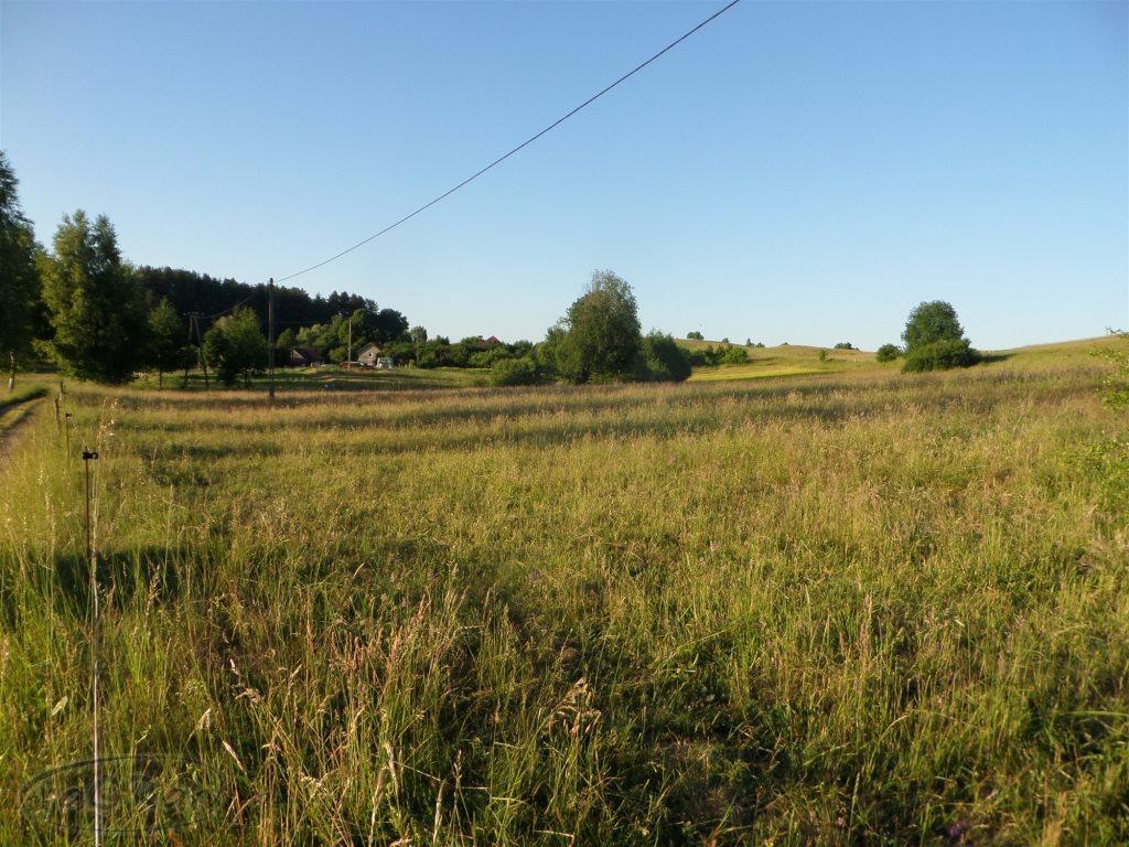 Działka rolna na sprzedaż Stare Kawkowo  3206m2 Foto 2