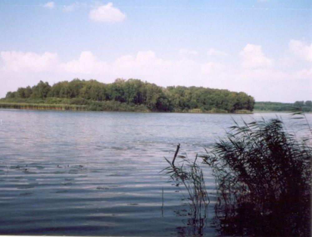 Działka siedliskowa na sprzedaż Myślibórz  125000m2 Foto 5