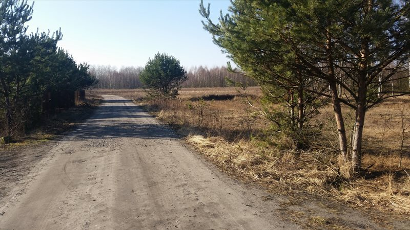 Działka rolna na sprzedaż Mariew  1500m2 Foto 11