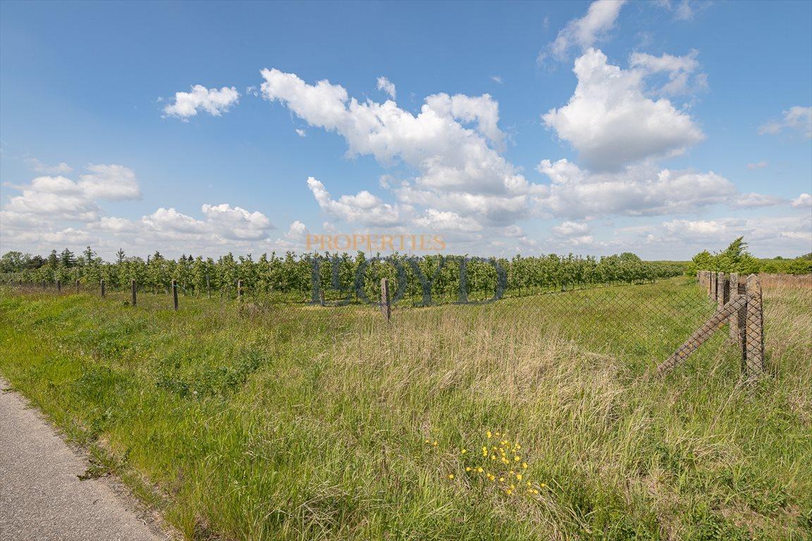 Działka rolna na sprzedaż Wola Wągrodzka, Ogrodowa  1000m2 Foto 9