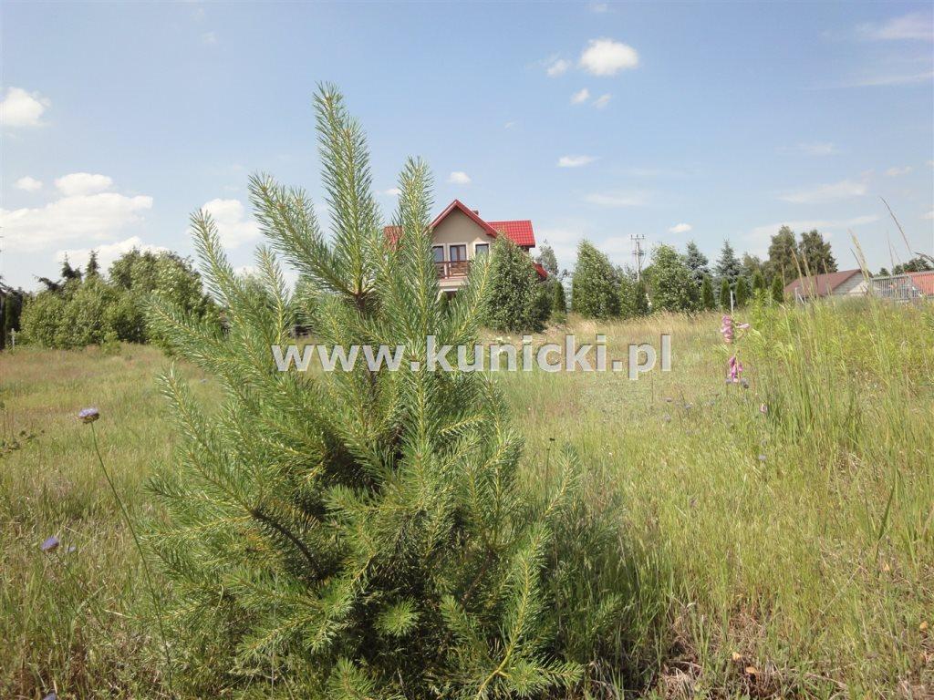 Działka budowlana na sprzedaż Przyborowice Górne  6250m2 Foto 4