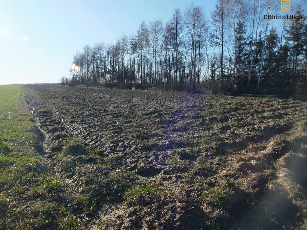 Działka rolna na sprzedaż Uniszowice  7400m2 Foto 3