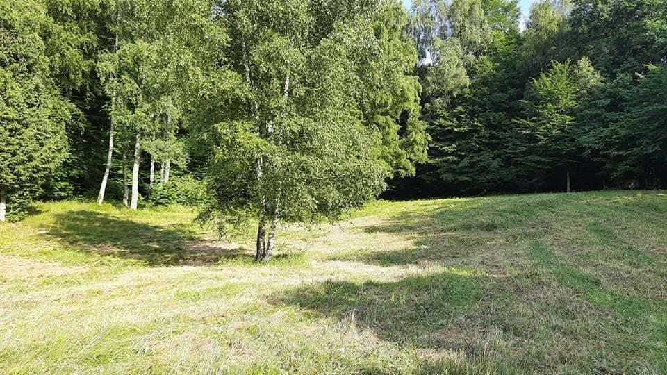 Działka siedliskowa na sprzedaż Ińsko  26300m2 Foto 7