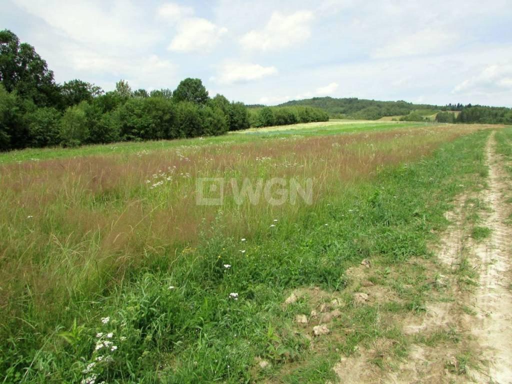 Działka rolna na sprzedaż Harta, Harta, Harta  8079m2 Foto 6