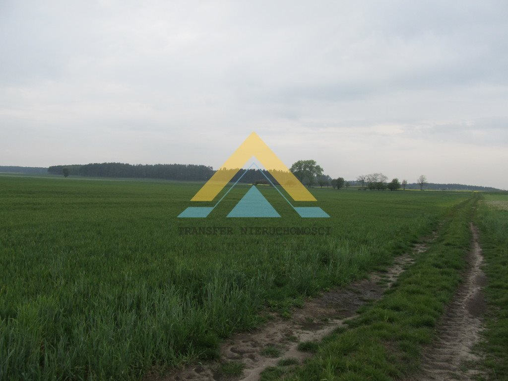 Działka siedliskowa na sprzedaż Choszczno  3090m2 Foto 1