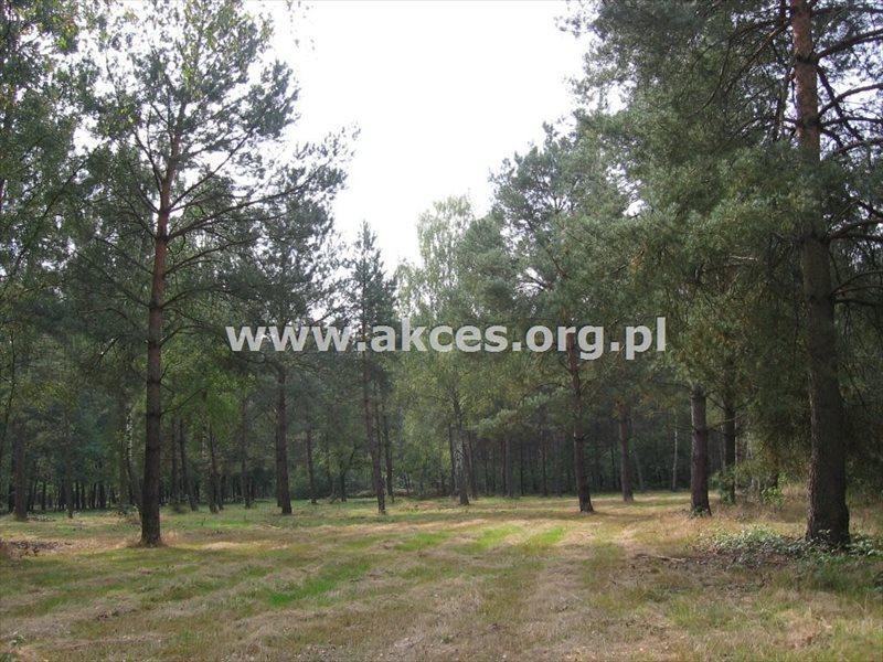 Działka budowlana na sprzedaż Jaktorów-Kolonia, Baranowskiego  2722m2 Foto 1