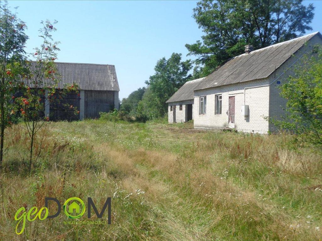 Działka rolna na sprzedaż Terespol  5927m2 Foto 3