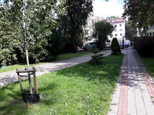 Mieszkanie dwupokojowe na sprzedaż Warszawa, Praga Południe, PESZTEŃSKA 10A  36m2 Foto 12