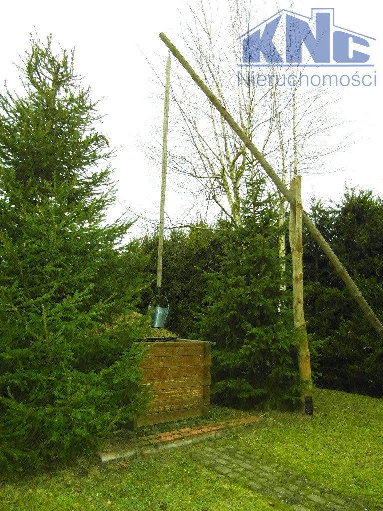 Lokal użytkowy na sprzedaż Tatarowce  404m2 Foto 13