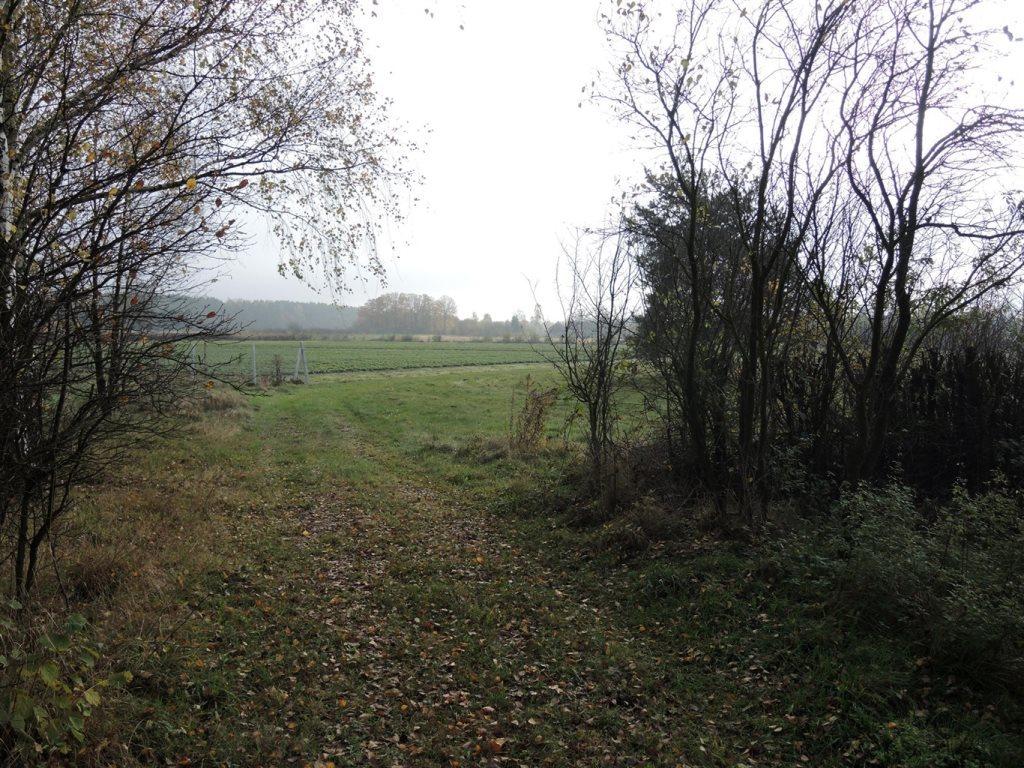 Działka rolna na sprzedaż Podlindowo  38000m2 Foto 1