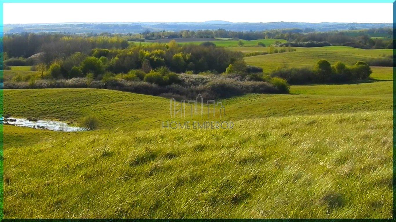 Działka rolna na sprzedaż Gołogóra  3004m2 Foto 2
