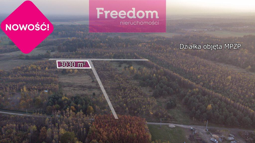 Działka budowlana na sprzedaż Wola Mokrzeska  3043m2 Foto 6