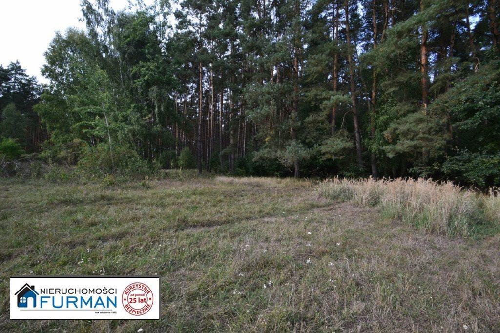 Działka siedliskowa na sprzedaż Biała  28600m2 Foto 5
