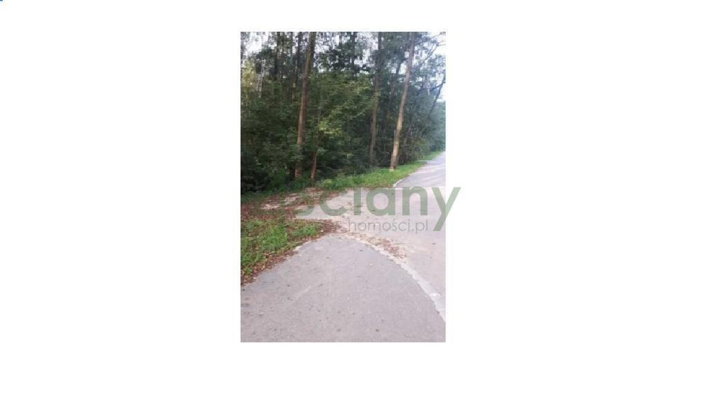 Działka leśna z prawem budowy na sprzedaż Książenice  4000m2 Foto 1
