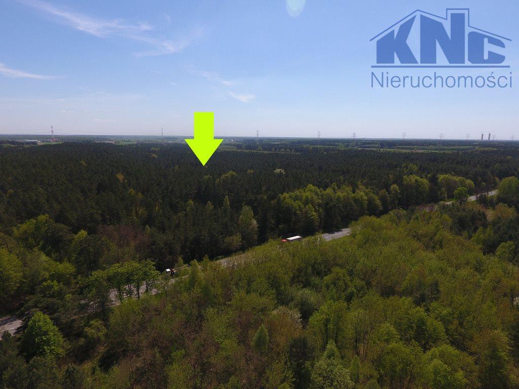 Działka leśna na sprzedaż Laskowiec  4200m2 Foto 1