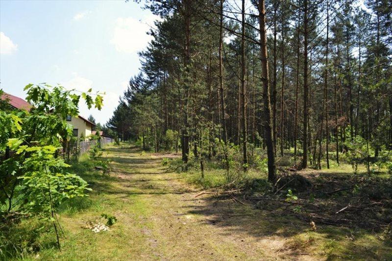 Działka rekreacyjna na sprzedaż Żarki-Letnisko  1000m2 Foto 12