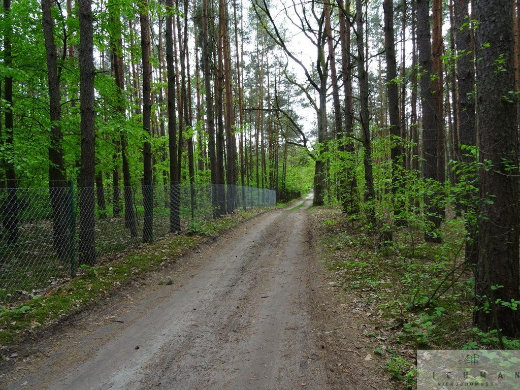 Działka leśna z prawem budowy na sprzedaż Kwiatkowice-Las  2420m2 Foto 3