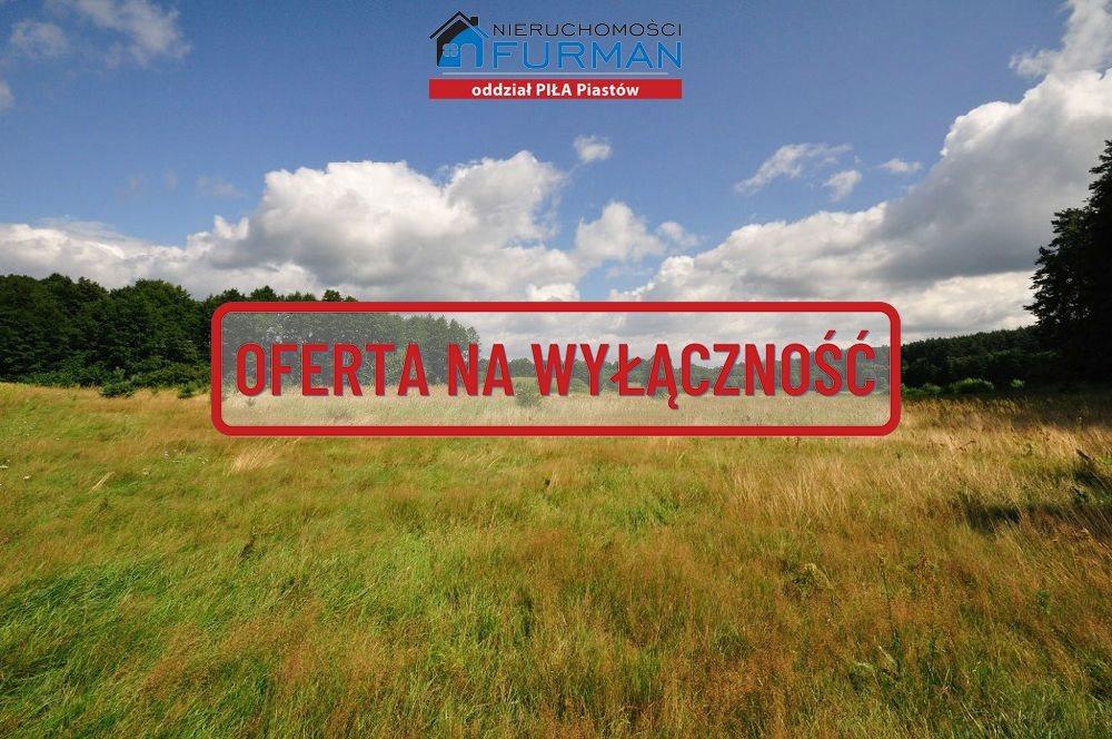 Działka rolna na sprzedaż Zabrodzie  7600m2 Foto 1
