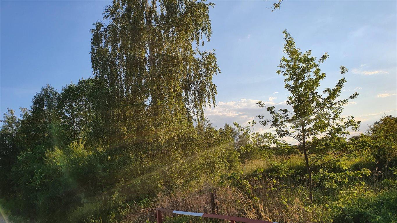 Działka budowlana na sprzedaż Kąck, Bursztynowa  3599m2 Foto 6