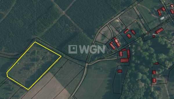 Działka rolna na sprzedaż Guzice, Guzice  14200m2 Foto 1