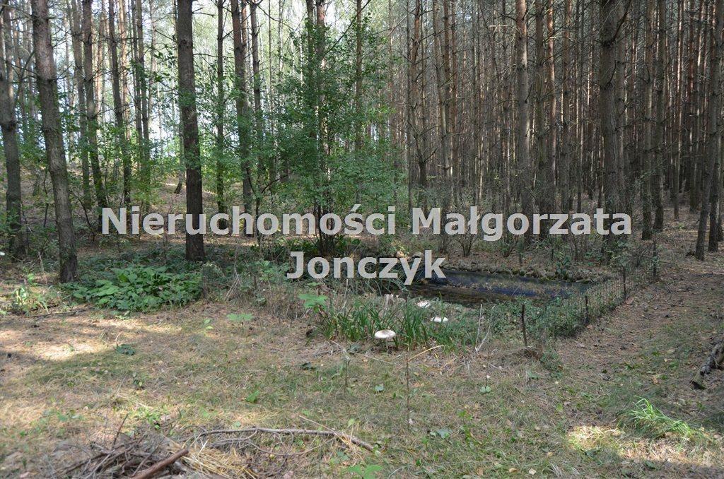 Dom na sprzedaż Zielęcice  75m2 Foto 6