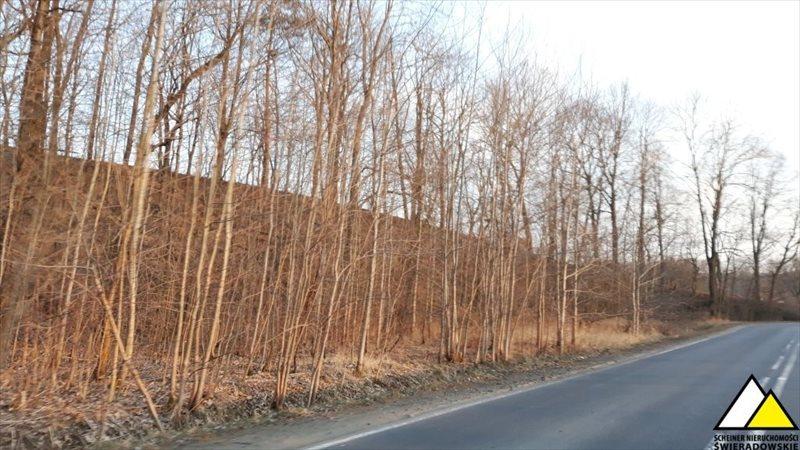 Działka leśna na sprzedaż Kościelniki Górne, Pogórze Izerskie  4800m2 Foto 4