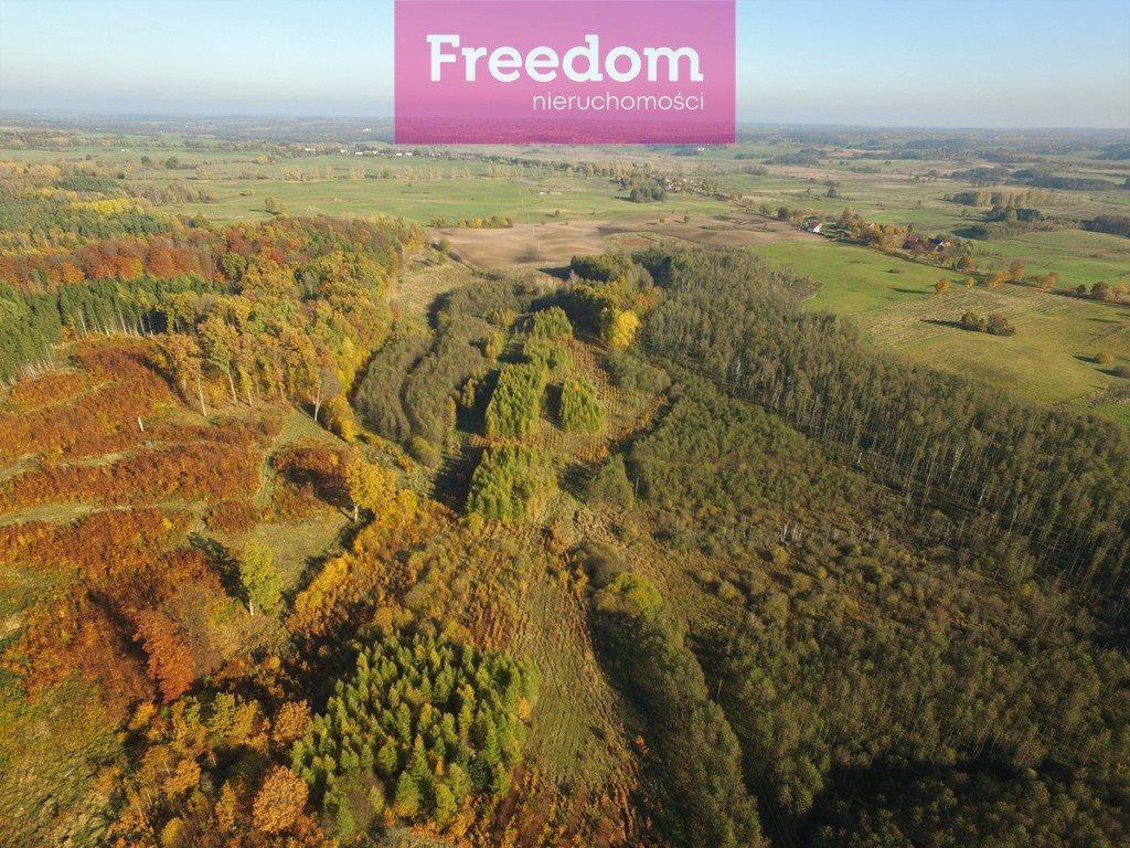 Działka leśna na sprzedaż Sobno  142300m2 Foto 2