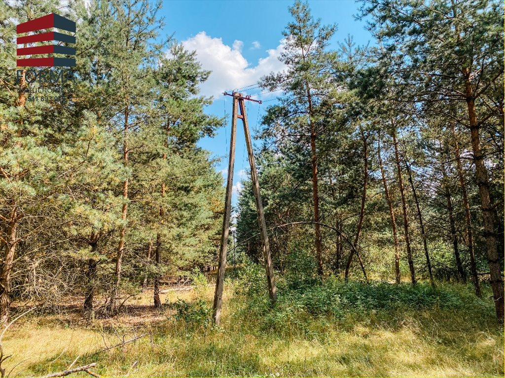 Działka budowlana na sprzedaż Zajączkowo, Zajączkowo  70600m2 Foto 12