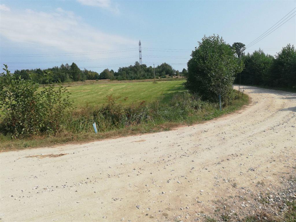 Działka rolna na sprzedaż Luzino, Zgody  12593m2 Foto 6