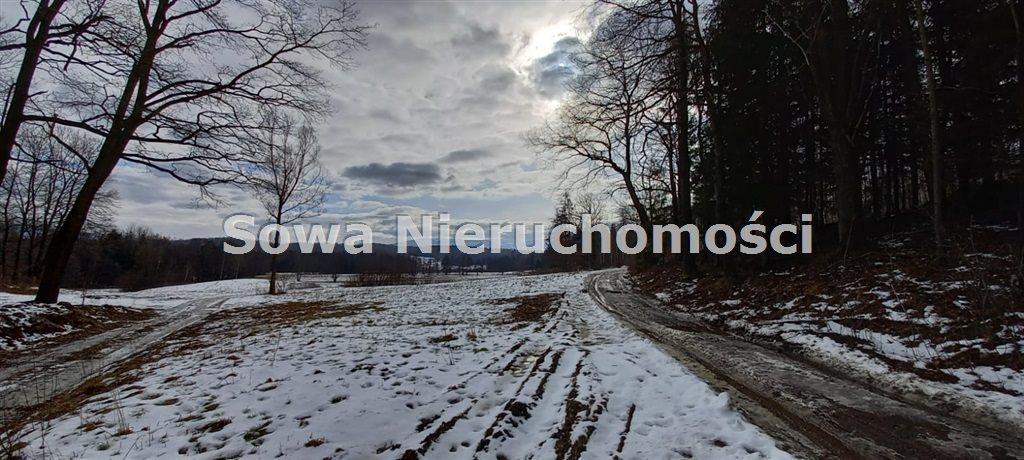 Działka budowlana na sprzedaż Jelenia Góra, Czarne  6230m2 Foto 2