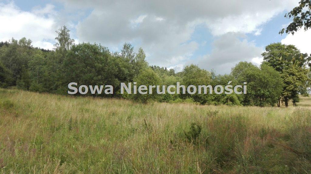Działka inna na sprzedaż Mieroszów, okolice Mieroszowa  14209m2 Foto 3