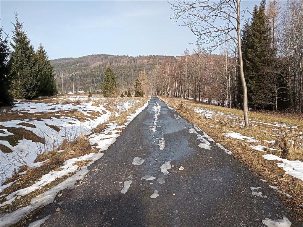 Działka rolna na sprzedaż Stary Gierałtów, Stronie Śląskie  30300m2 Foto 7