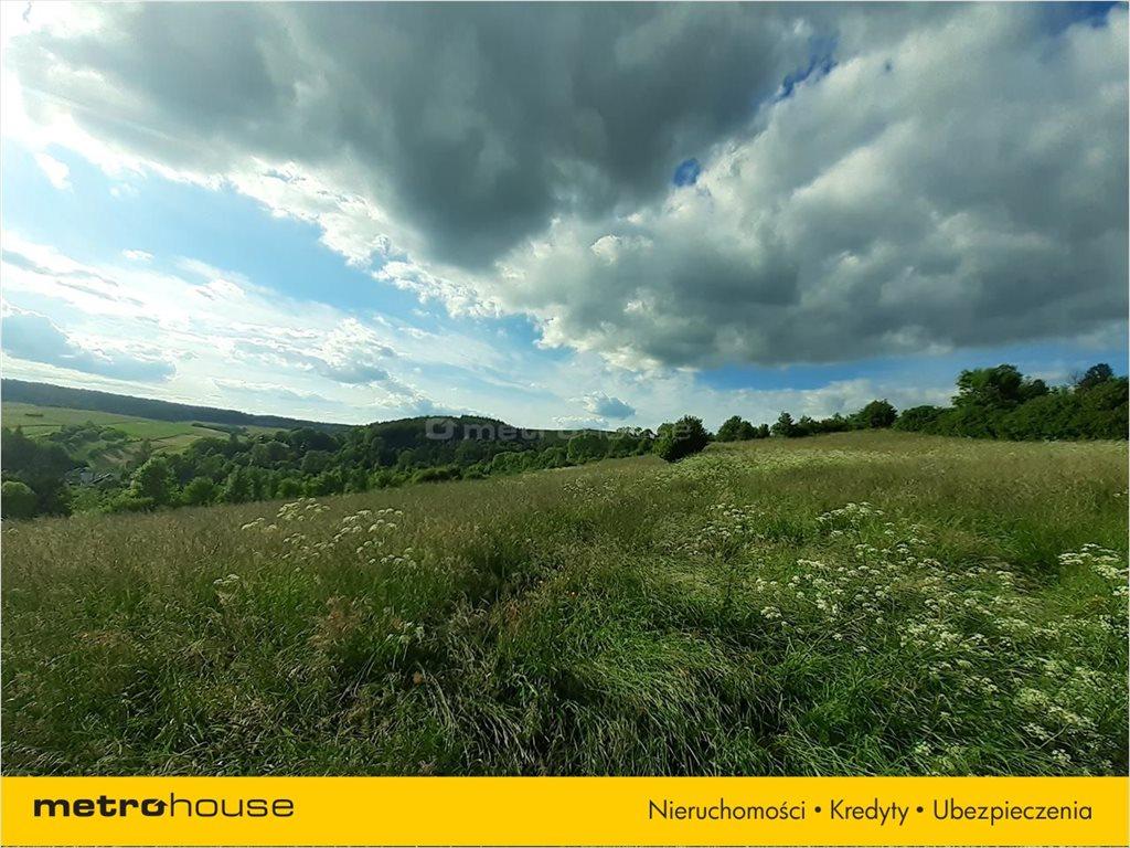 Działka rolna na sprzedaż Morochów, Zagórz  10000m2 Foto 3