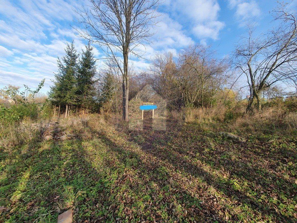 Działka budowlana na sprzedaż Sobótka, Przełęcz Tąpadła  1200m2 Foto 1