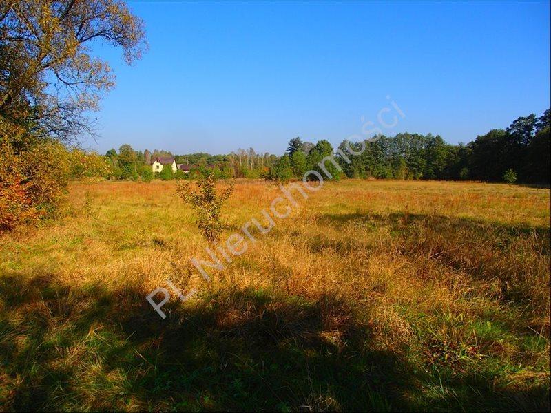 Działka rolna na sprzedaż Stanisławów  12800m2 Foto 12