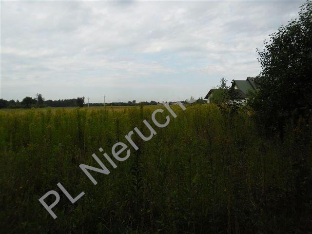 Działka rolna na sprzedaż Olesin  1370m2 Foto 4