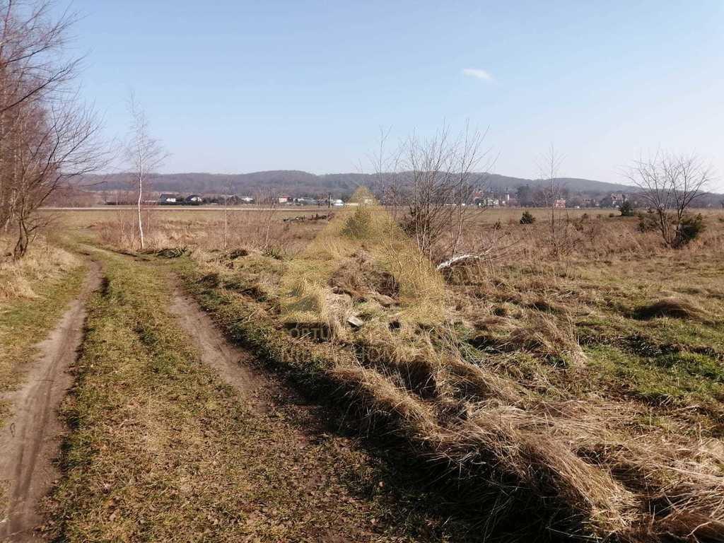 Działka rolna na sprzedaż Żyrowa  17020m2 Foto 5