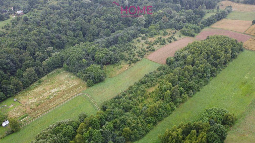 Działka leśna na sprzedaż Śliwnica  14500m2 Foto 3