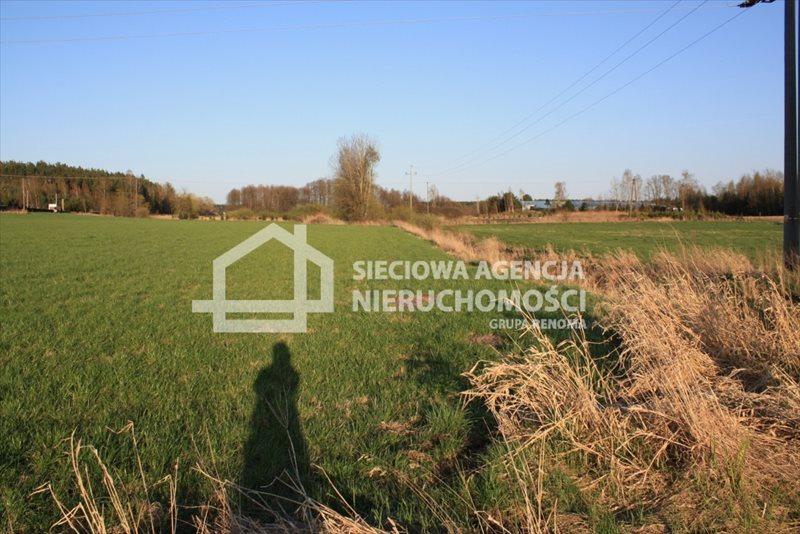 Działka siedliskowa na sprzedaż Stara Kiszewa  8767m2 Foto 9